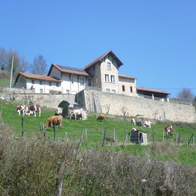 Offres de vente Maison Sainte-Foy-l'Argentière (69610)